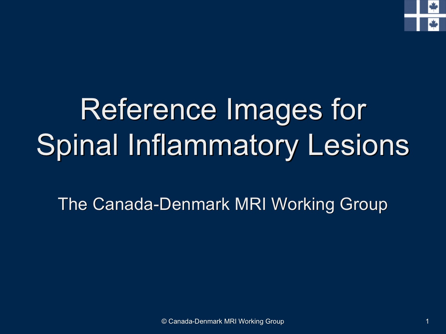 Reference Images for Spinal Inflammation Slide
